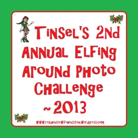 Tinsel's 2nd Annual Elfing Around Photo Challenge 2013